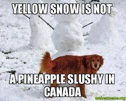 Canada Snow Meme - yellow snow is not a pineapple slushy in canada make a meme