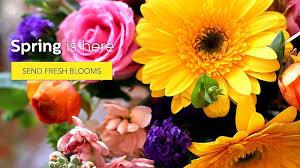 flower shops in miami flower shop miami fl