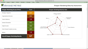 shopper marketing system rfp demand metric