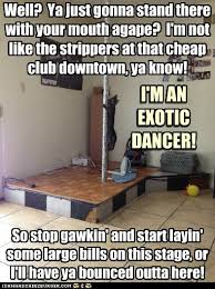 Funny Stripper Memes - lolcats stripper lol at funny cat memes funny cat pictures
