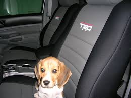 2008 toyota tundra seat covers closed buy okole seat cover gb toyotanation toyota