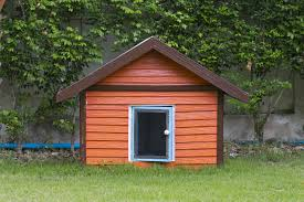 how to build a cottage house how to build a dog house or dog kennel