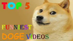 Funniest Doge Meme - top 5 funniest doge videos youtube