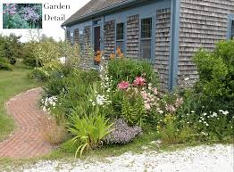 native plants in massachusetts cape cod historic homes blog gardening with native plants to