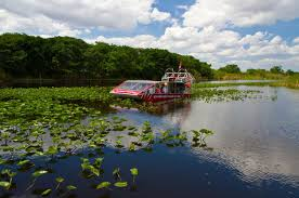 fan boat tours miami everglades air boat and alligator show with private transport in