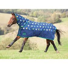 shires tempest original 200 combo medium weight turnout rug