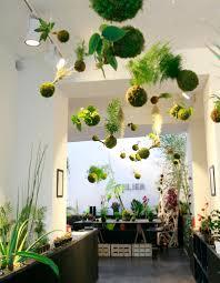 Ambiance Et Jardin Jardin Suspendu Jpg Vegetation Pinterest Jardins Plantes