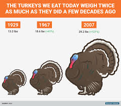 how big turkeys were then and now business insider