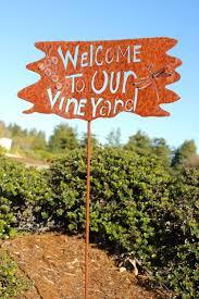 about hawk hill u2014 hawk hill vineyard