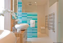 spa bathroom decorating ideas spa bathroom decorating ideas houzz