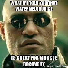 Watermelon Meme - watermelon meme info