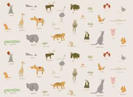 fantastic animal wallpaper for kids bedrooms with additional