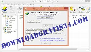internet download manager free download full version indowebster serial key free download for windows xp