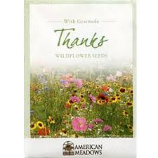 wildflower seed packets with gratitude thanks seed packet seed packets gratitude and