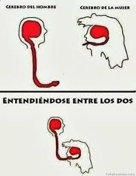 Buenos Memes En Espaã Ol - https i ytimg com vi uzf95fk4r0k hqdefault jpg machismo