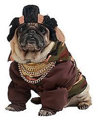 Spirit Halloween Pet Costumes Holy Hound Dog Costume Spirithalloween