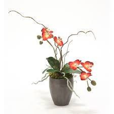 Red Orchids Silk Red Orchids With Curly Willow In Metallic Black Plum Pot