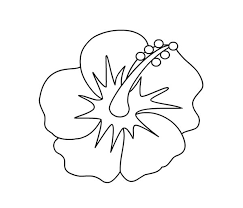 coloring pictures of hibiscus flowers hibiscus flower picture coloring page color luna
