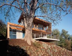 modern eco friendly tree house