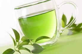 Teh Hijau manfaat teh hijau untuk kesehatan gigasoft