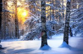 winter snow wallpapers wallpaper wiki