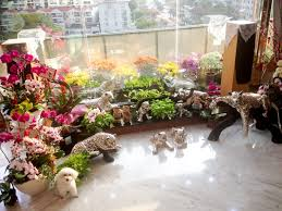 flower bed designs ideas home decorating and tips design loversiq