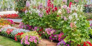 Garden Flowers Ideas Garden Ideas Flower And Vegetable Garden Plans