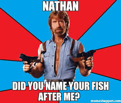 Nathan Meme - nathan did you name your fish after me meme chuck norris 26837