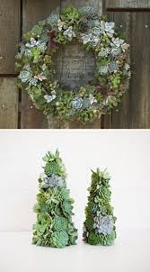 succulent wreath and trees succulents pinterest