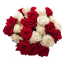 Dozen Of Roses Images Of Red And White Home Rose Bouquet Red And White Red