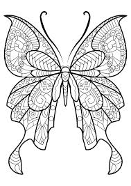 coloring page butterfly printable pages drawing images animal book