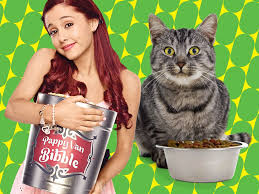 robbie theslap hollywood arts victorious cat valentine bedroom cat theslap hollywood arts 39 victorious cat