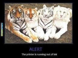 Grumpy Cat Meme Creator - cat printer meme all the best printer in 2018