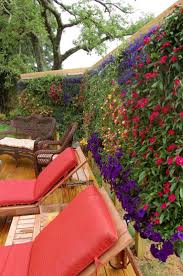 Garden Wall Troughs by Best 20 Vertical Garden Wall Ideas On Pinterest Wall Gardens