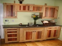 Ready Made Cabinets For Kitchen Ash Kitchen Cabinets Ash Kitchen Cabinets Houzz Inspiration