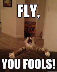 Meme End Of The World - fly you fools end of the world cat quickmeme