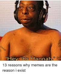 Why Memes - hey it s hannah 13 reasons why memes are the reason i exist meme