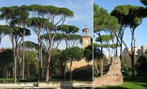 the pines of rome by ottorino respighi