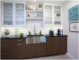 Brizo Tresa Kitchen Faucet Kitchen Over The Sink Shelf Detrit Us