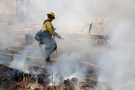 Wild Fire Cle Elum Wa by Controlled Burn Planned For Roslyn Forest Health And Safety U2014 The