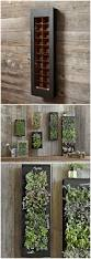 rectangular chalkboard wall planter bring your wall to life with