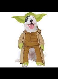 Dog Halloween Costumes Halloween Dog Costume Ideas 32 Easy Cute Costumes