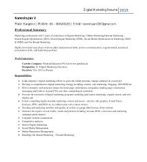 Online Marketing Resume by Narendra Resume New