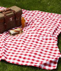 Outdoor Picnic Rug It Doesn T Get More Classic Than A Gingham Picnic Blanket