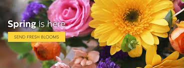 flower delivery nc winston salem florist flower delivery by price davis florist