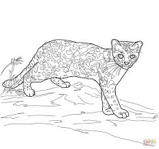 100 cat coloring pages free printable for kids seasons free