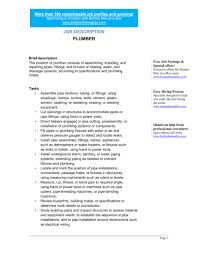 plumber job description template u0026 sample form biztree com