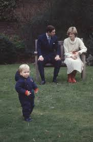 16872 best diana princess of wales images on pinterest princess