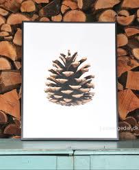 pine cone paper art print u2013 crowdyhouse