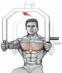Muscles Used When Bench Pressing Machine Chest Press U2022 Bodybuilding Wizard